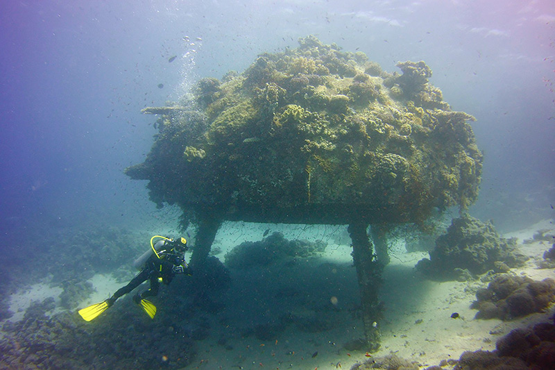 Longest stay in an underwater habitat (Africa)